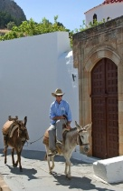 Man on a Donkey