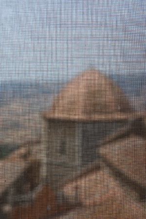 Volterra Baptistery Through Screen
