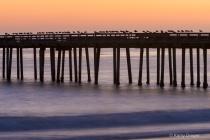 Pier & Seagulls a...