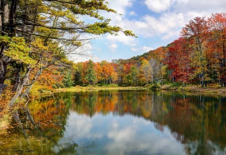 Autumn at Science Lake