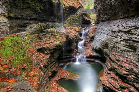 The Beauty of Watkins Glen