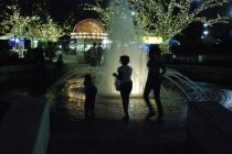 Fountain Silhouet...