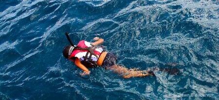 snorkel better