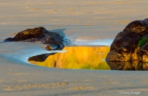 Tidal Pool Reflec...