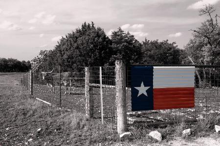 Along A Texas Highway