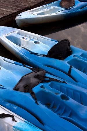 Blue Kayaks