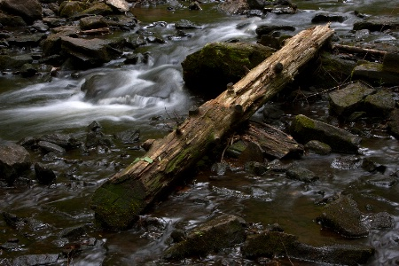 Log and Stream