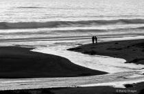 Beachcombers, Cre...