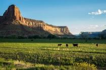Utah Landsape