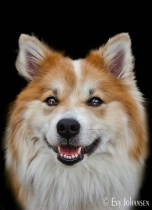 Portrait of Lukka