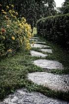 Down the Garden P...