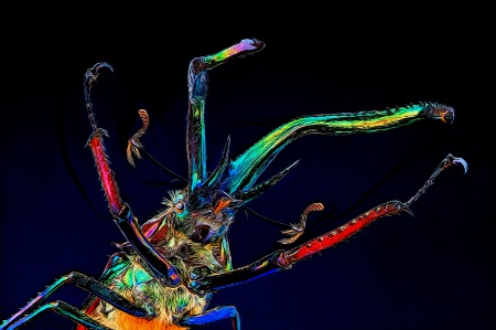 Psychedelic Stag