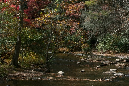 Fires Creek in Fall