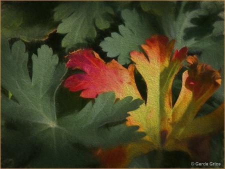 Design in Autumn Colours