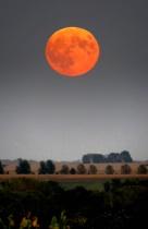 I See A Bad Moon ...