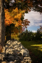 Fall Morning in N...