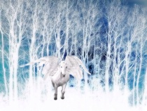 Winter Pegasus