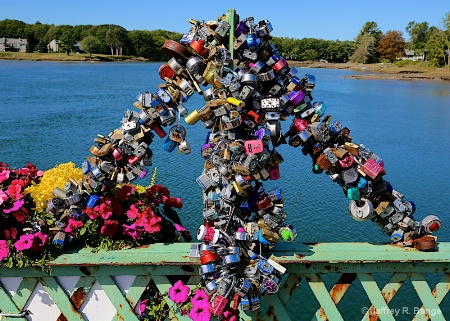 """Locks Of Love"""