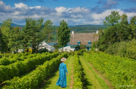 Young Woman in Vineyard on Ile d'Orleans, QC