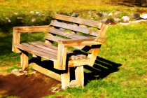 A  BENCH  AT  THE...