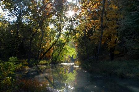 The Creek At Clayton Lake