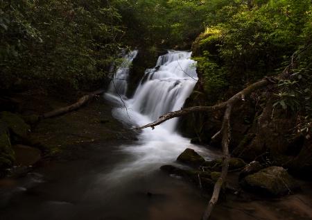 Shoal Creek Flowing