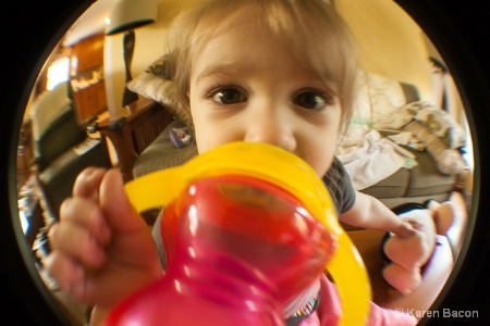 the chaos behind the sippy cup