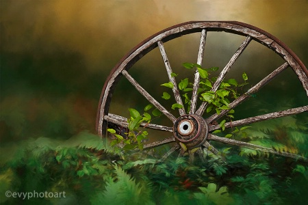 Old Wheel in Nature