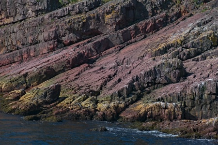 Colours and Textures of Cliff Face, Bay Bulls