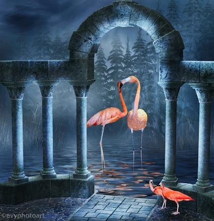 Flamingos and Ibis