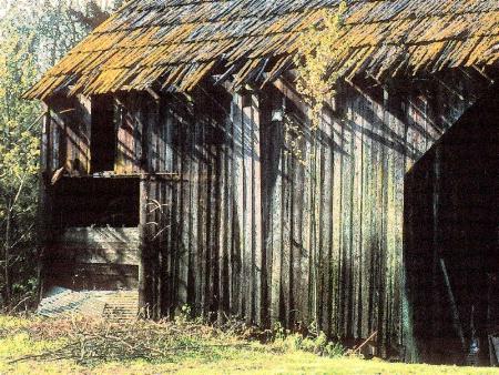 Mossy Barn