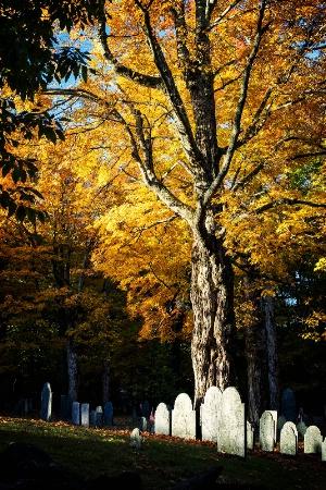 New England Remembrances