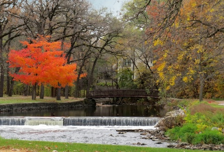 Fall Color At East Park