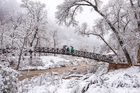 Zion in the Snow.
