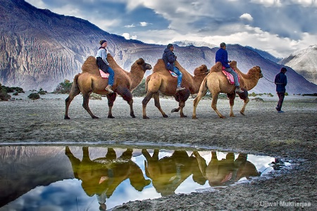 Camel Ride at Hunder