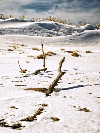 Snow on the Dunes