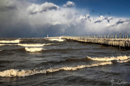 A Blustery Day at Ontario