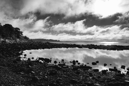 Morning at Rachel Carson Salt Pond