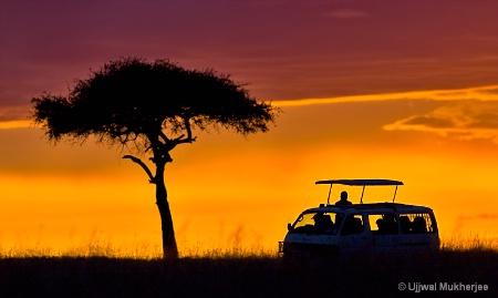 African Safari #2