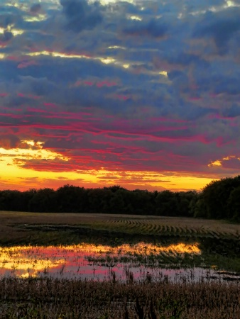 Sunrise Pond 4