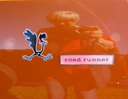 Road Runner And Friend