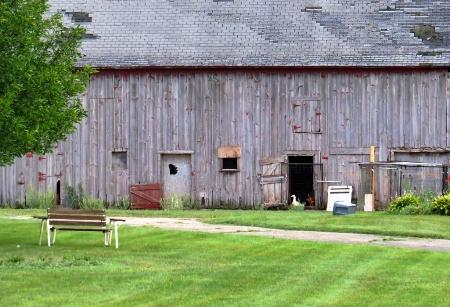 Fowl Barn Door