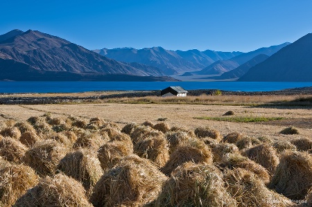 Pangong Lake region