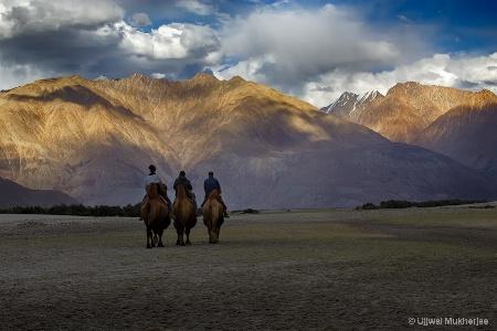 Camel Ride at Hundar Desert