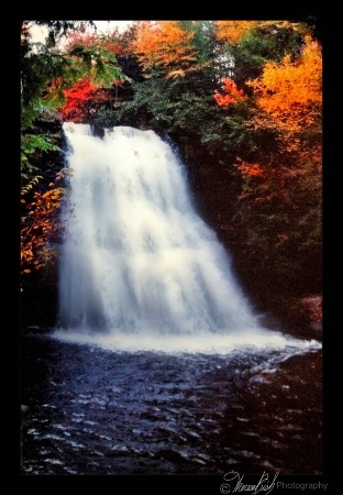 """Swallow Falls"""