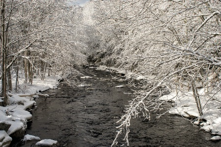 Winter River #1