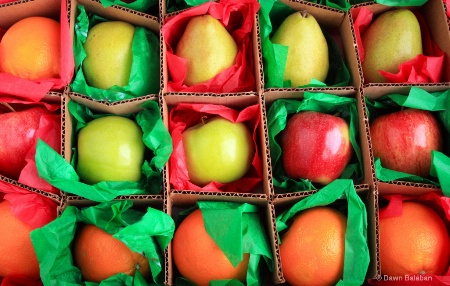 fruit full