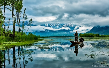 Nigeen Lake Reflections
