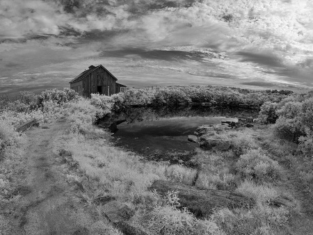 Island in Infrared