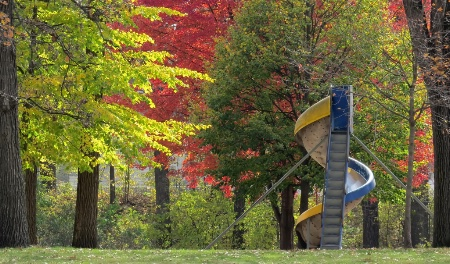 Autumn In East Park